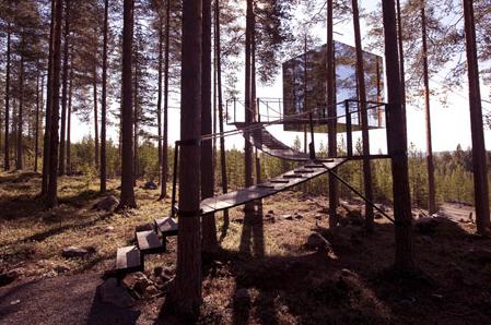 A digitalistic getaway: Treehotel, Sweden