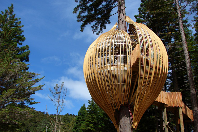 A digitalistic getaway: Redwood's Treehouse