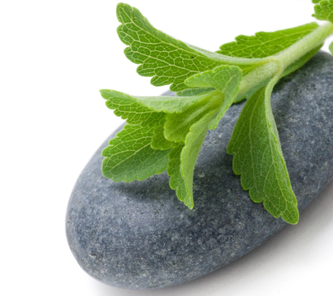 Stevia: the new sugar