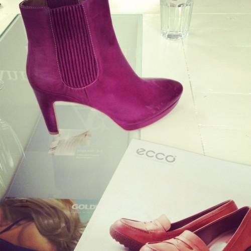 Press day Favorites: ECCO