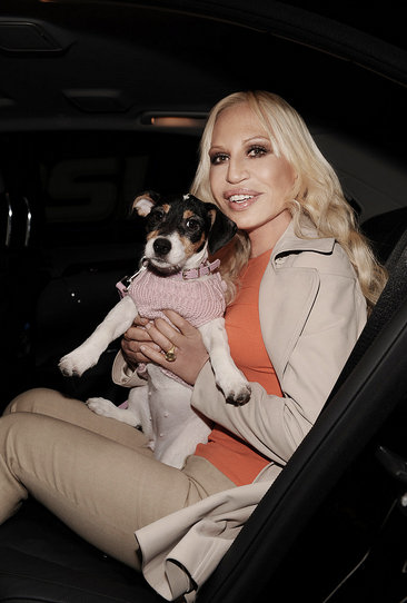Donatella Versace's dog is her icon