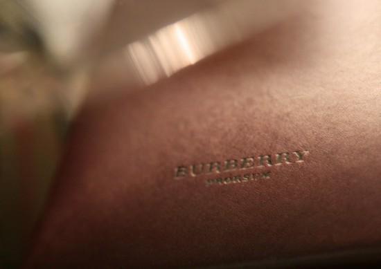 Burberry Livestream: A/W '13 show