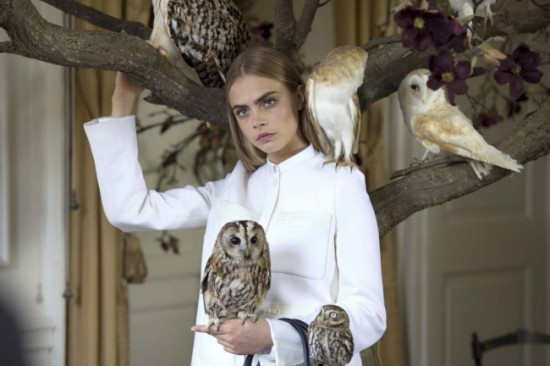 Owls, a tree, Cara & Mulberry