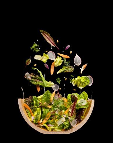 Salad Cutaway