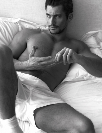 DavidGandy_pillow_tweet2