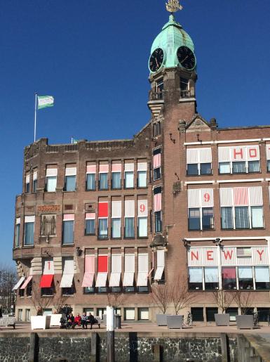 Rotterdam_cactus14