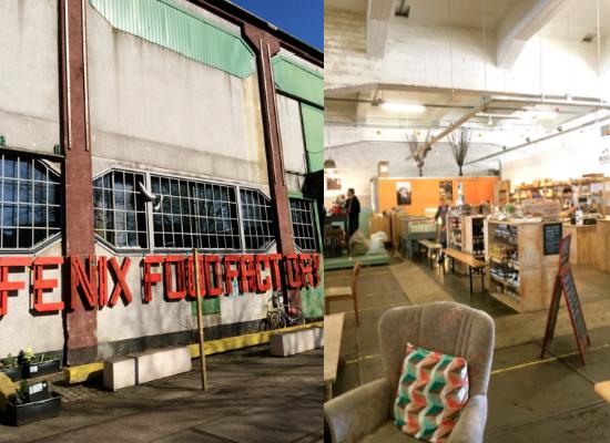 Rotterdam_fenix_factory